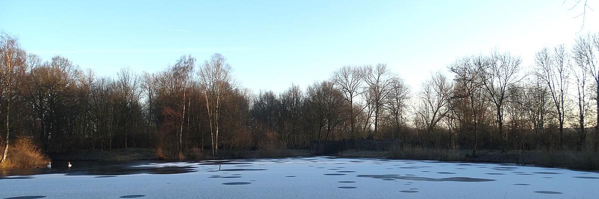 Bevroren kooiplas